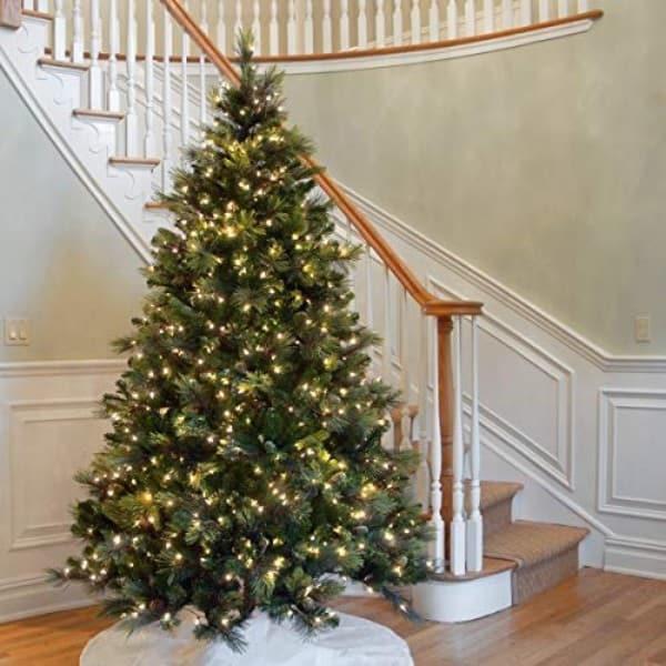 Carolina Pine Tree (7.5 Feet)