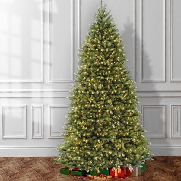 Dunhill Fir Tree (12 Feet)