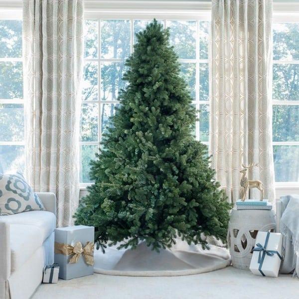 Green Cypress (7.5 Feet)